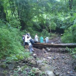 Nature and Waterfall Trek in Pai.