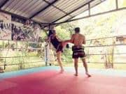 Muay Thai Training Sitjemam Header
