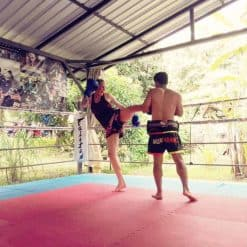 Muay Thai Training Sitjemam