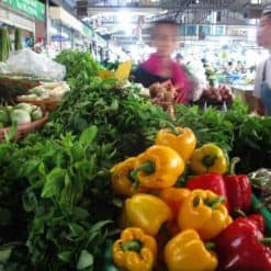 Thai Market in San Sai, Chiang Mai