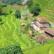 Nepal-Houses-and-rice-terraces