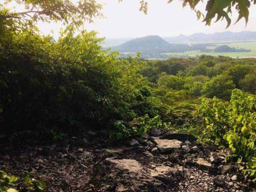 Bat Cave of Battambang Views