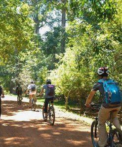 Biking through the jungle around Angkor Wat Cambodia