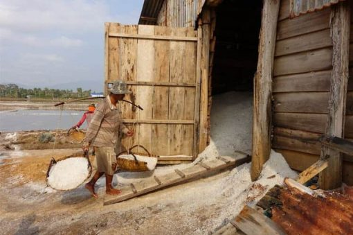 Salt Farmers in Kampot, Cambodia