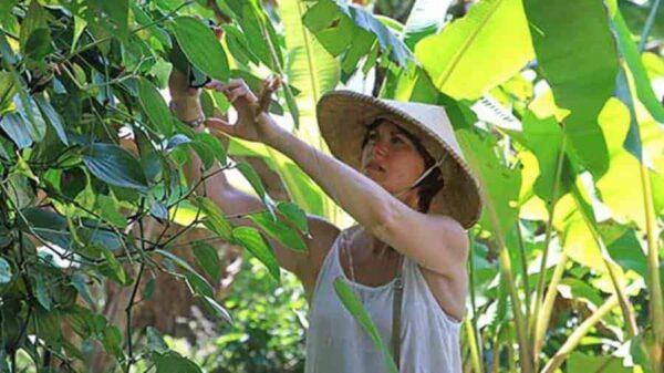 Serenity Eco Yoga Retreat Bali