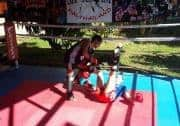sparring new