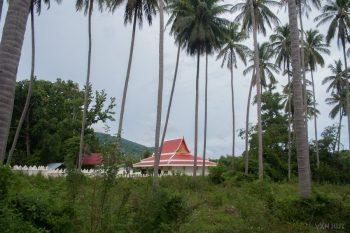 Wat Samret Seen Through Palm Trees
