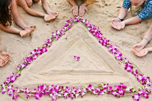 Triangle made out of lotuses on the beach