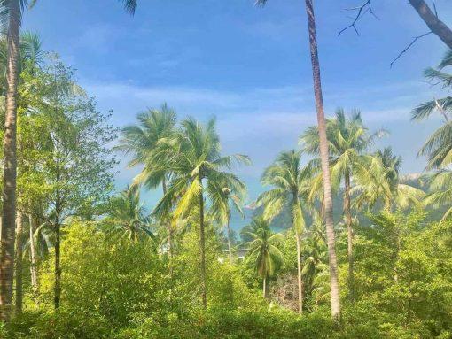 Koh Phangan, Meditation Teacher Training Course
