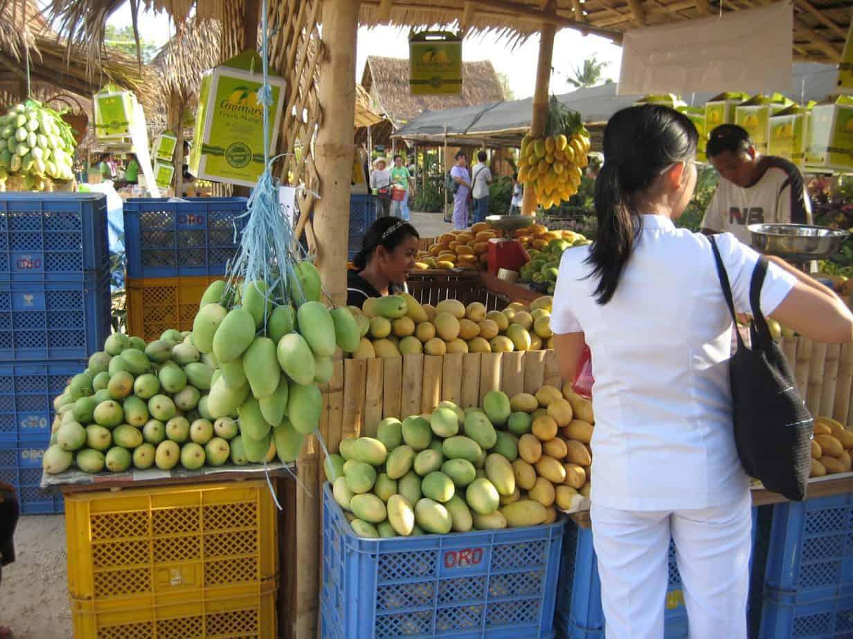 Mangoes in Guimaras Island, Philippines