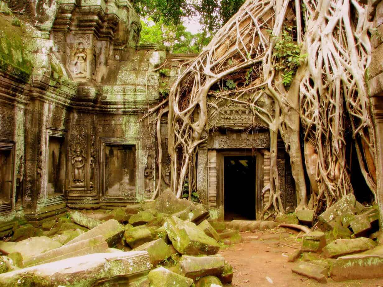 Nature regaining control at Ta Phrom, Siem Reap