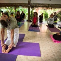 WLYA 200-hour Yoga Teacher Training Course.