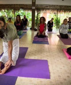 WLYA 200-hour Yoga Teacher Training Course.