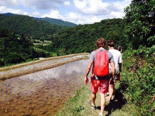 Trekking in Mae Wang, Chiang Mai