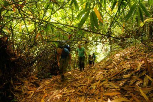 Jungle trekking Luang Prabang