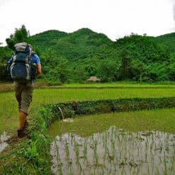 Trekking the rice fields of Laos.