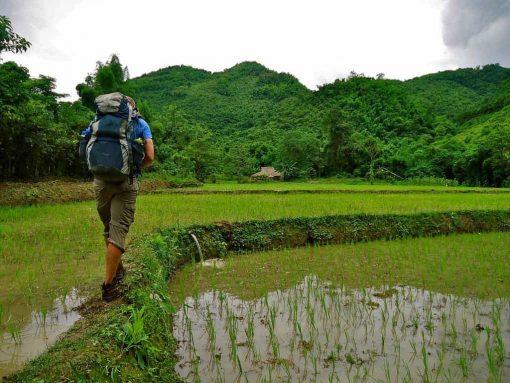 Trekking the rice fields of Laos.