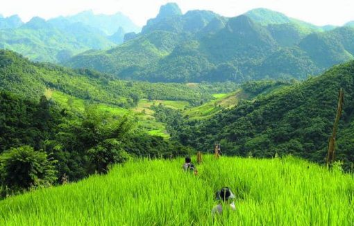 Trekking in the mountains of Laos.
