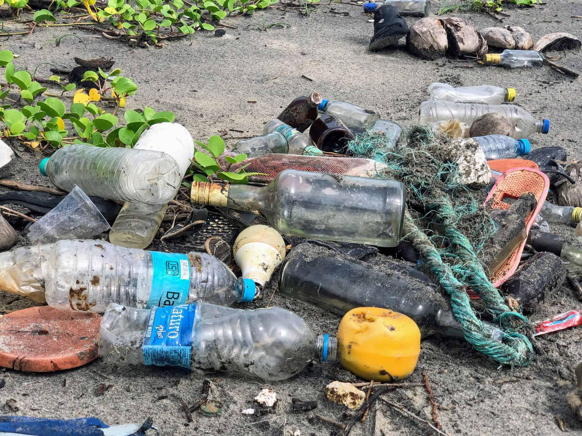 Plastic bottles litter
