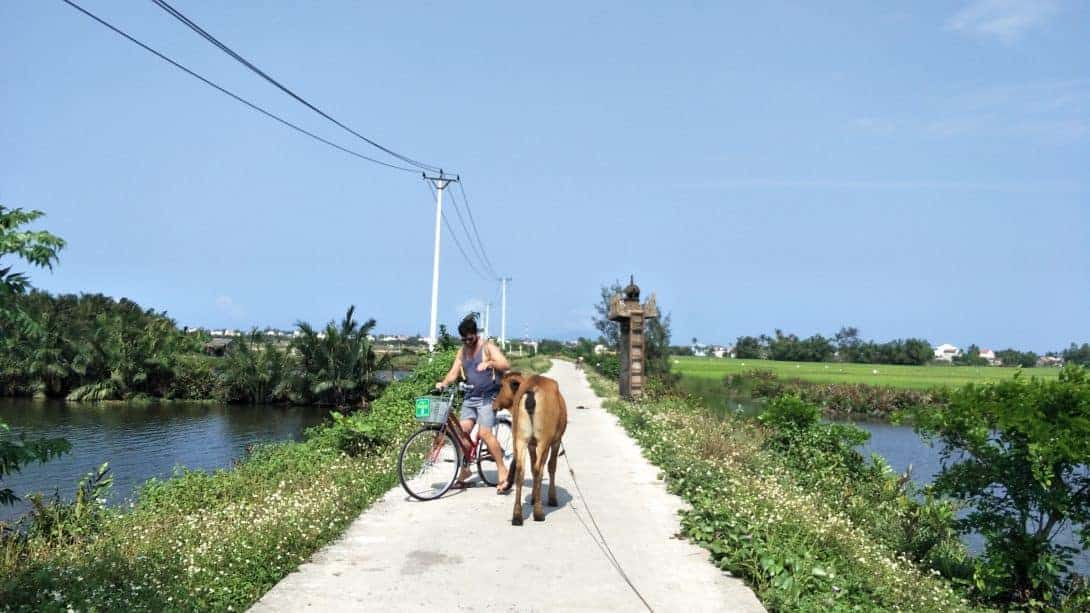 Cycling in the countryside around Hoi An