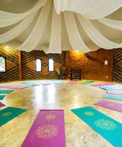 yoga shala chiang mai mala dhara eco resort & yoga retreat center