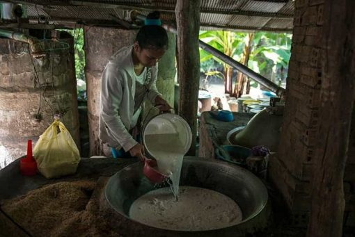 Making rice wine in Battambang, Cambodia