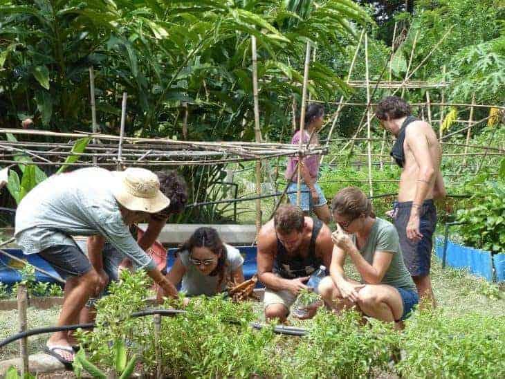 Rak Tamachat Permaculture Course, Thailand