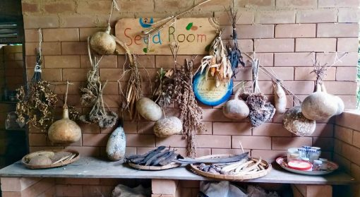 The seed room at Rak Tamachat.