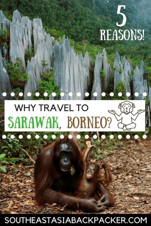 Why travel to Sarawak, Borneo?