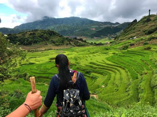 Hiking in Sapa with the Black Hmong Hill Tribe.