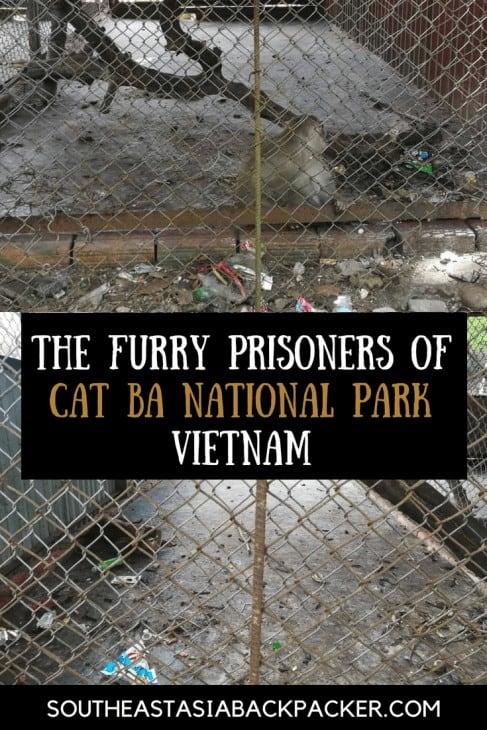 The Furry Prisoners of Cat Ba National Park, Vietnam