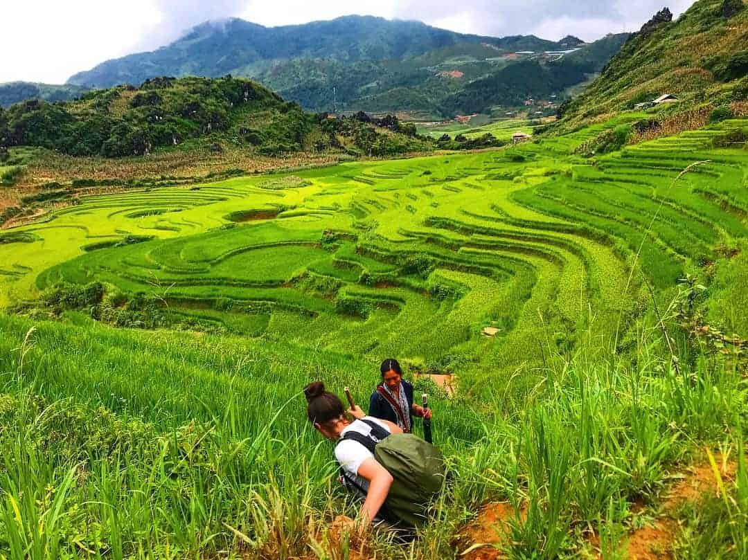 A Girl and Her Trekking Guide Make Their Way Down The Rice Terraces In Sapa
