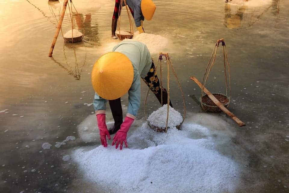 Harvesting salt in Vietnam.
