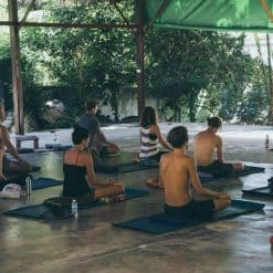 Meditation Teacher Training