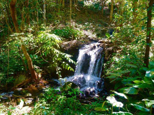 A minin waterfall in Doi Inthanon National Park.