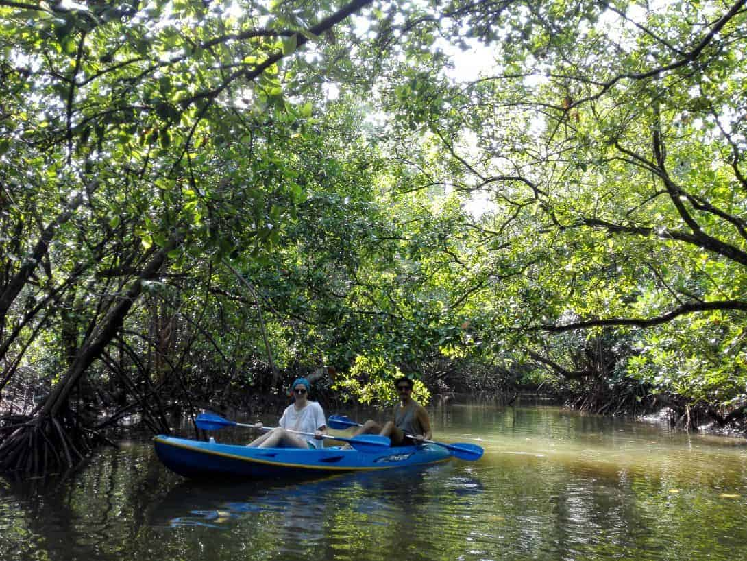 Two people kayaking in the mangroves, Khanom