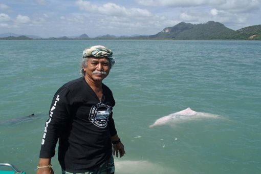 Mr Lee of Khanom Tours with a pink dolphin in the background.