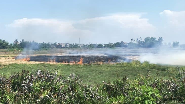 Burning Season in Southeast Asia