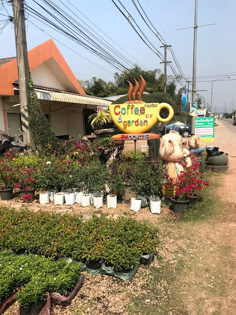 Coffee and Garden Coffee shop in Phu Sang, Thailand