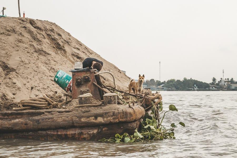 Dog on sand barge