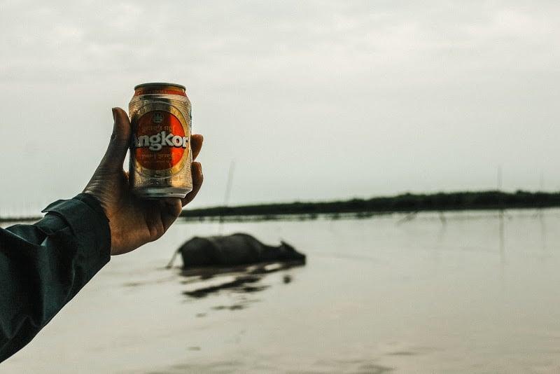 Angkor Beer and Water Buffalo Tonlé Sap