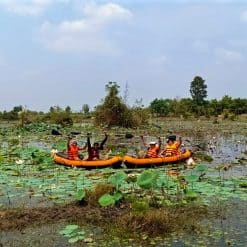 Kayaking amidst Lotus field Trav Kot Cambodia