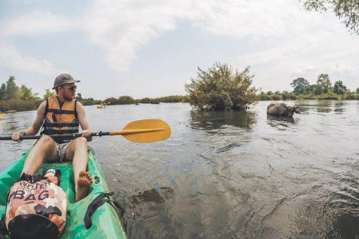 Kayaking Past the Water Buffalo