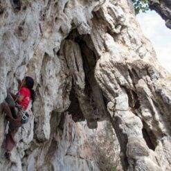 Climbing up limestone karsts