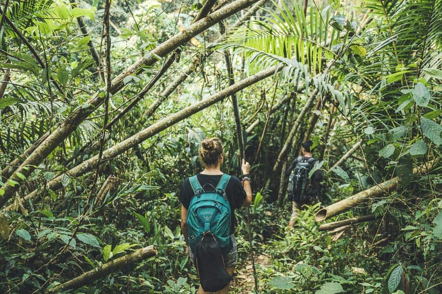 Luang Namtha Trekking: An Unforgettable Experience in the Laotian Jungle!