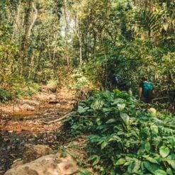 Nam Oun Wilderness Trail Trek | 2 Days, 1 Night | from Luang Namtha