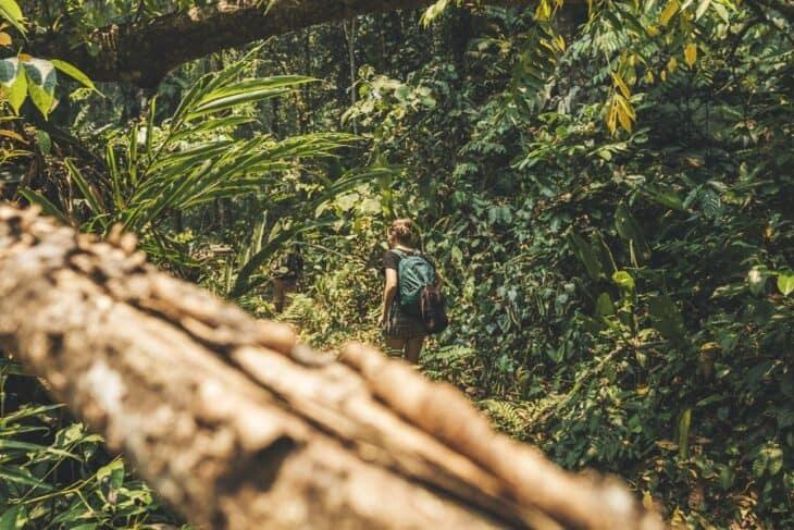 Trekking the Nam Oun Wilderness Trail