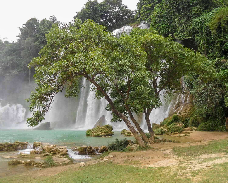 Tree close to Ban Gioc Waterfall by Juha-Matti Viitanen