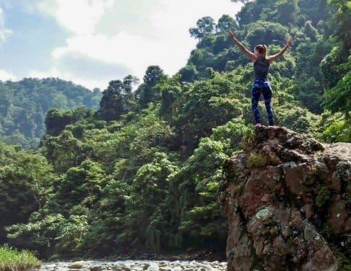 Person overlooks jungle