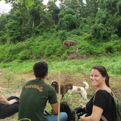 A Group of Travellers Observe Elephants From Afar at BEES Elephant Sanctuary Thailand